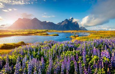 ICELAND_ southeastern Icelandic coast.