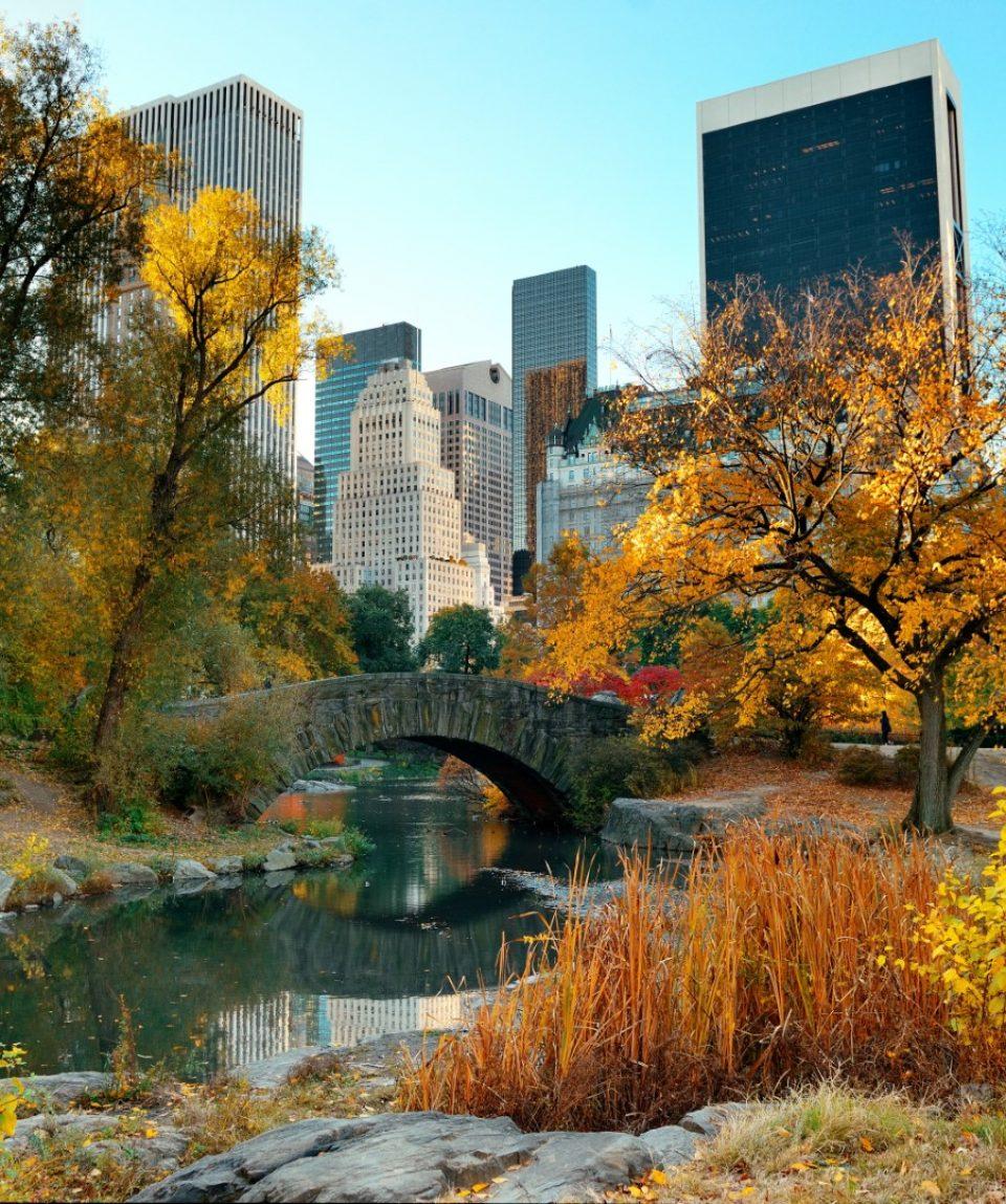 NY_Central_Park1 (zmensene)