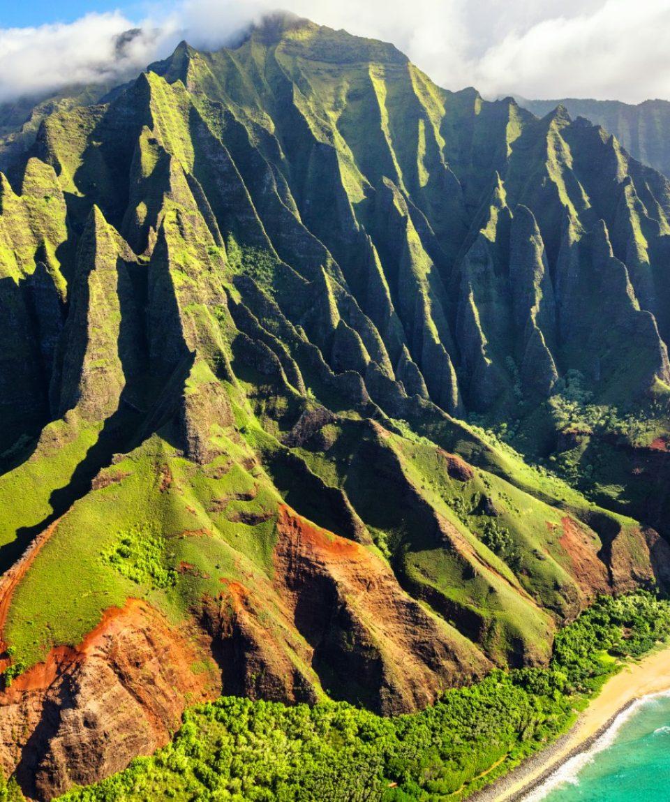 Hawaii product (zmensene)